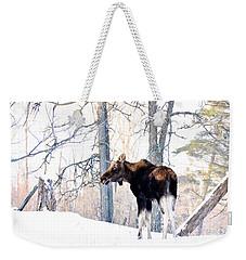 Mr. Moose Weekender Tote Bag by Cheryl Baxter
