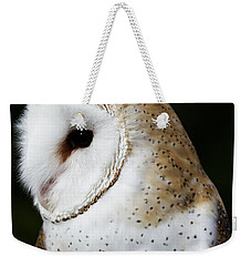 Mr Owl  Weekender Tote Bag