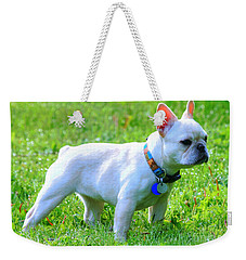 Ms. Quiggly - French Bulldog Weekender Tote Bag