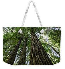 Muir Woods I Weekender Tote Bag