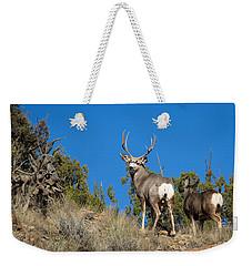 Weekender Tote Bag featuring the photograph Mule Deer Buck by Michael Chatt