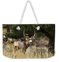 Mule Deer I Weekender Tote Bag