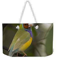 Multicolored Beauty Weekender Tote Bag