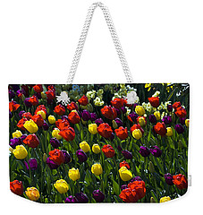 Multicolored Tulips At Tulip Festival. Weekender Tote Bag