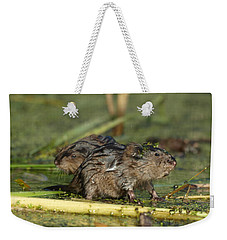 Weekender Tote Bag featuring the photograph Munchkins by James Peterson