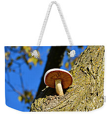 Weekender Tote Bag featuring the photograph Mushroom In A Tree by Ally  White
