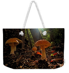 Weekender Tote Bag featuring the photograph Mushroom Morning by GJ Blackman