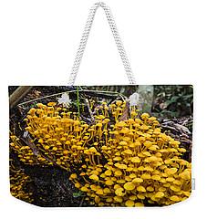 Mushrooms On Tree Trunk Panguana Nature Weekender Tote Bag by Konrad Wothe