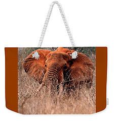 My Elephant In Africa Weekender Tote Bag