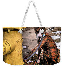 Weekender Tote Bag featuring the photograph My Friend Plug by Robert McCubbin