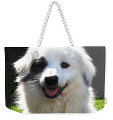 Weekender Tote Bag featuring the photograph My Little Pirate by Judy Palkimas