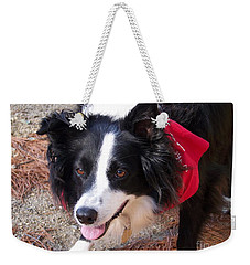 Female Border Collie Weekender Tote Bag