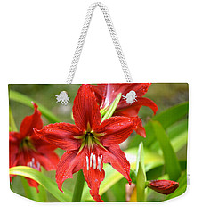 My Red Daylily...after The Rain Weekender Tote Bag
