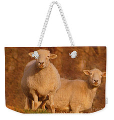 Weekender Tote Bag featuring the photograph My Sheep ...   by Lydia Holly