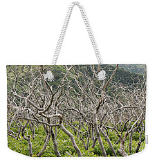 Weekender Tote Bag featuring the photograph Naked Ladies Dancing by Mary Carol Story