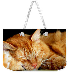 Weekender Tote Bag featuring the photograph Naptime by Todd Blanchard
