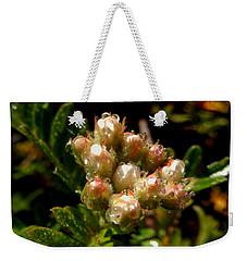 Nature's Drink Weekender Tote Bag by Pamela Walton
