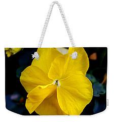 Nature's Light Weekender Tote Bag