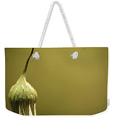 Nature's Little Lamp Weekender Tote Bag by Shane Holsclaw