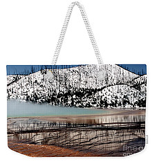 Weekender Tote Bag featuring the photograph Nature's Mosaic I by Sharon Elliott