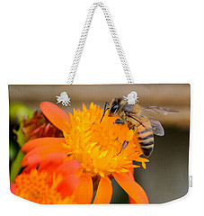 Weekender Tote Bag featuring the photograph Carrying A Load by Debra Martz