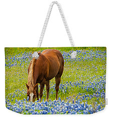 Nelly Grazing Among The Bluebonnets Weekender Tote Bag