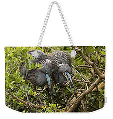 Weekender Tote Bag featuring the photograph Nest Building by Priscilla Burgers
