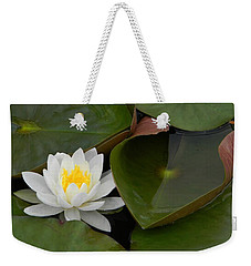 Weekender Tote Bag featuring the photograph Nestle In by Jean Goodwin Brooks