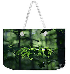 Weekender Tote Bag featuring the photograph Never Far From My Thoughts by Linda Shafer