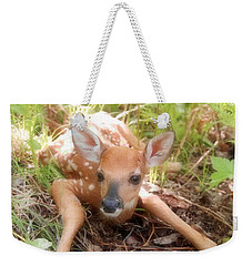 New Fawn In The Forest Weekender Tote Bag by Angie Rea