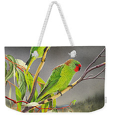 New Life - Little Lorikeets Weekender Tote Bag