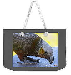 New Zealand Kaka Happy Hour Weekender Tote Bag