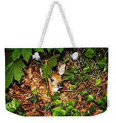 Weekender Tote Bag featuring the photograph Newborn Fawn  by Eleanor Abramson