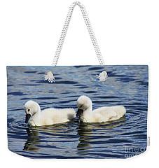 Newborn Mute Swans Weekender Tote Bag