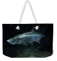 Night Tarpon Weekender Tote Bag