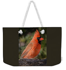 Northern Cardinal 2 Weekender Tote Bag