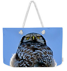 Northern Hawk Owl Looks Around Weekender Tote Bag by Torbjorn Swenelius