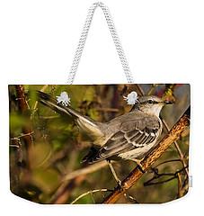 Northern Mockingbird Weekender Tote Bag by Chris Flees