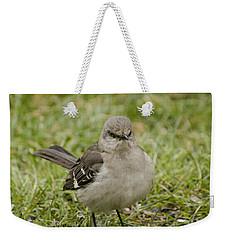 Northern Mockingbird Weekender Tote Bag by Heather Applegate