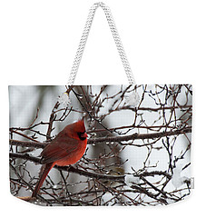 Northern Red Cardinal In Winter Weekender Tote Bag