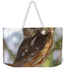 Northern Saw-whet Owl Weekender Tote Bag