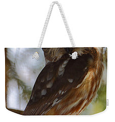 Northern Saw-whet Owl II Weekender Tote Bag