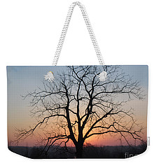 November Walnut Tree At Sunrise Weekender Tote Bag