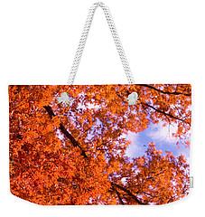 Oak In Evening Sun Weekender Tote Bag