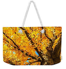 Weekender Tote Bag featuring the photograph Oak In The Fall by Mike Ste Marie