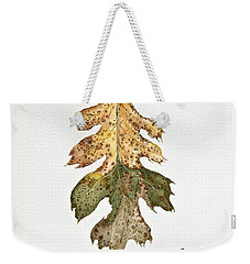 Weekender Tote Bag featuring the painting Oak Study by Michele Myers