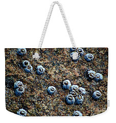 Weekender Tote Bag featuring the photograph Ocean's Quilt by Christiane Hellner-OBrien