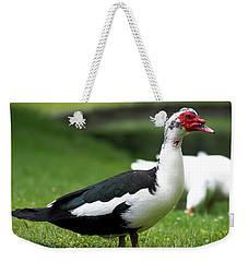 Odd Duck Weekender Tote Bag
