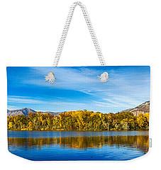 Ogden Weekender Tote Bag