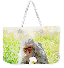 Oil Painting - A Monkey Eating An Ice Cream Weekender Tote Bag